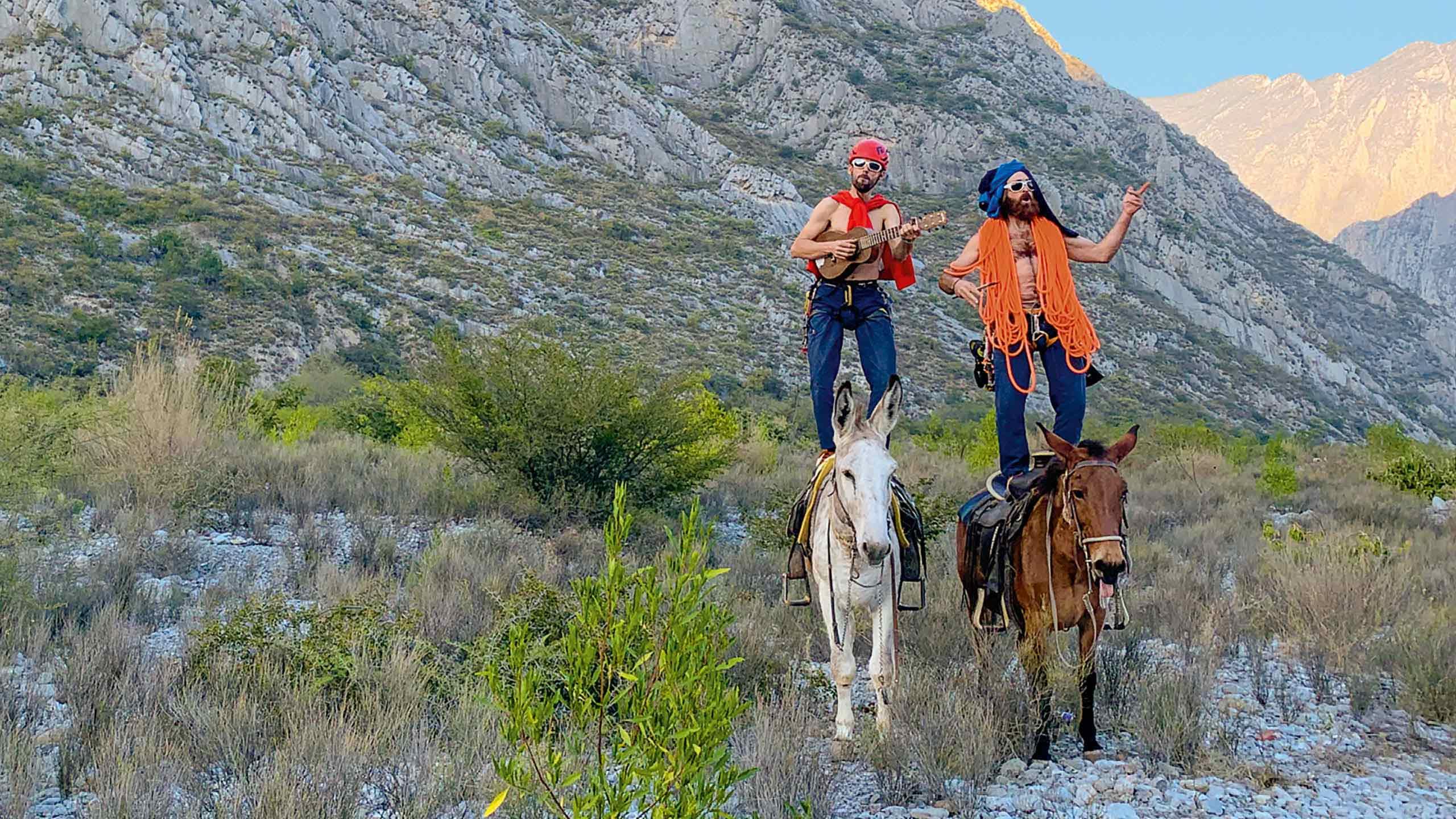 sports shoes 2afc9 324f2 Patagonia online entdecken & kaufen   Transa Travel & Outdoor